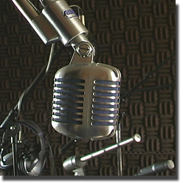 picture of Shure 556